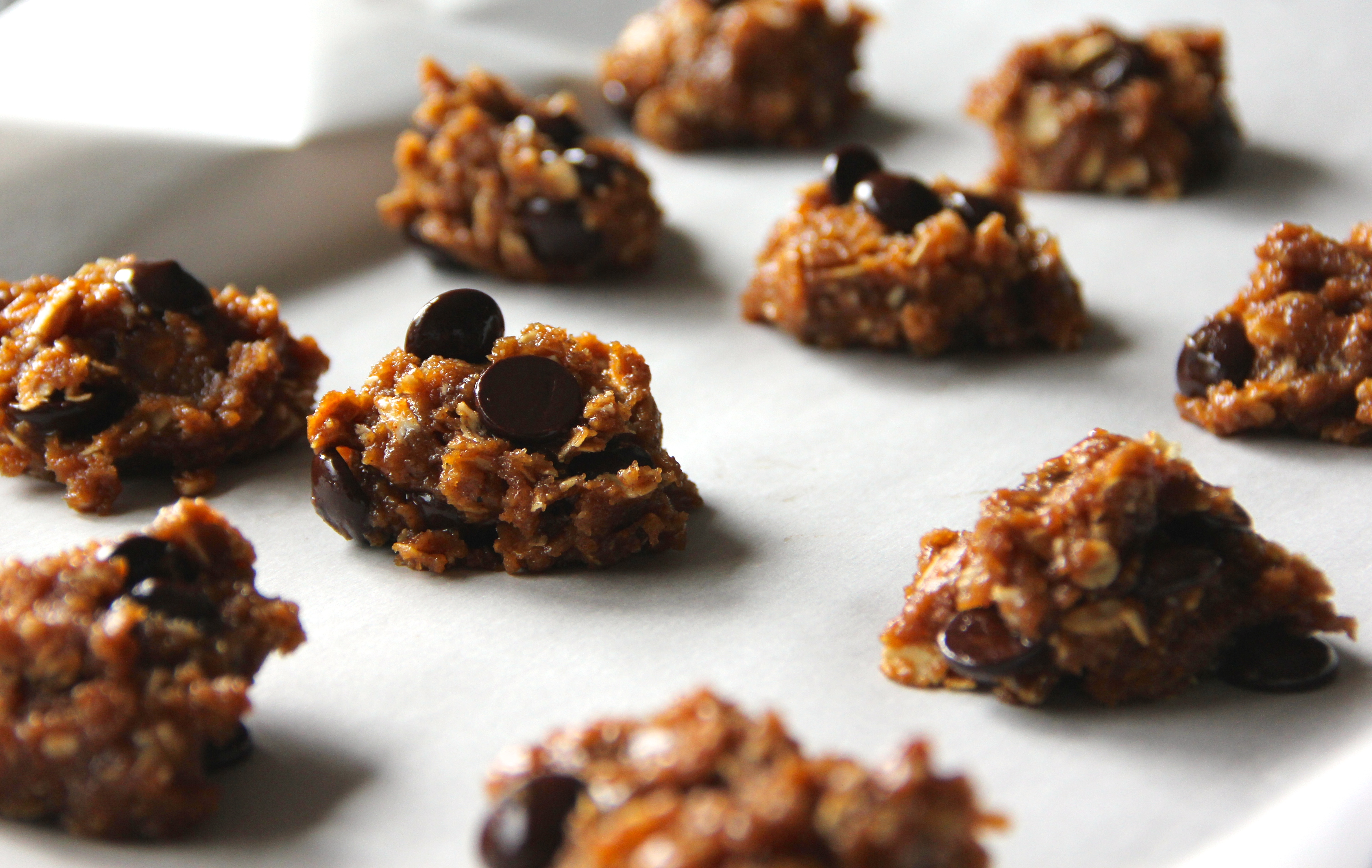 Peanut Butter Chocolate Chip Oatmeal Cookies With Sea Salt Recipes ...